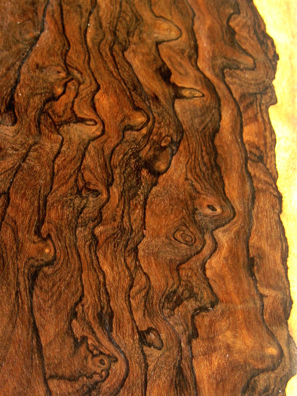 Woodwork exotic wood grain pdf plans for Most beautiful wood